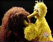 Snuffy cries over the sad part of the movie