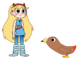 Star meets Red-Tailed Hawk