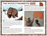 Woolly Mammoths and Humans