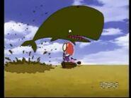 CTCD Whale