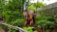 Columbus Zoo Parasourolophus