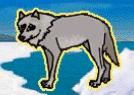 MSB Wolf