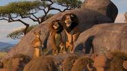 Madagascar2-disneyscreencaps.com-2918