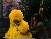 Big Bird sobs over his birdie pox