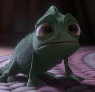 Pascal sad 3