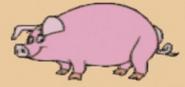 Pig wtpk