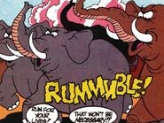 Elephants TUM