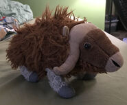Marty the Muskox