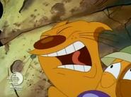 Screaming Cat Loudly