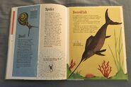 The Dictionary of Ordinary Extraordinary Animals (48)