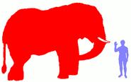Elephant Horse Human and Dog