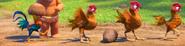 Moana Chickens