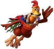 Rocky rhodes chicken run