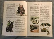 A Golden Exploring Earth Book of Animals (6)