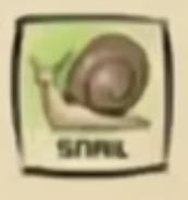 IMG df snail