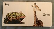 James Balog's Animals A to Z (4)