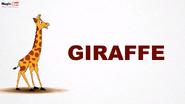 MagicBox Giraffe