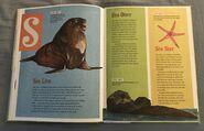 The Dictionary of Ordinary Extraordinary Animals (46)