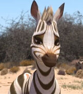 Tombi in Khumba