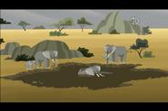 African Elephant (Wild Kratts)