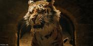 Dolittle 2020 Tiger