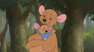 Kanga hugging roo