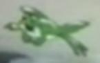 Frog gnifd