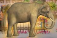 Little Einsteins Indian Elephant