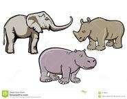 Elephants Rhinos and Hippos
