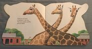 The Zoo Book (1)