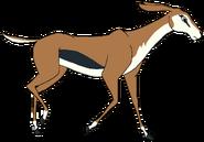 Tina the Thomson's Gazelle