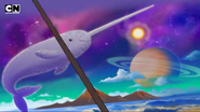 WBB Narwhal
