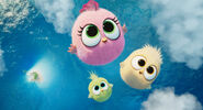 Zoe, Vincent and Samantha (The Angry Birds Movie 2)