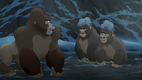 Gorilla TLG