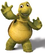 Verne the Turtle