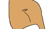Hippo D.W.'s Butt 🍑 Shake