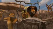 Madagascar2-disneyscreencaps.com-4538