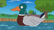 Simpsons Duck