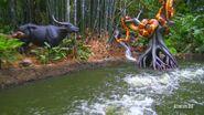 Jungle Cruise Python and Water Buffalos