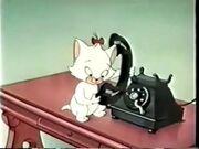 Kitty Kuddles