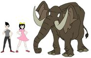 Riley and Elycia meets African Forest Elephant