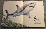 The A to Z Book of Wild Animals (17)