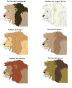 Lion subspecies