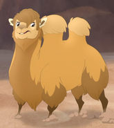 Bactrian Camel TLG