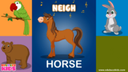 Ebubuzz Kids Horse