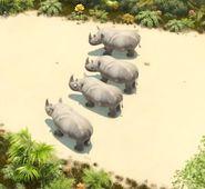 TheJungleBunch Rhinos