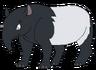 Toby the Malayan Tapir