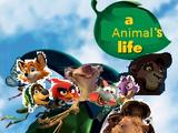 A Animal's Life (LUIS ROGER ALBERTO GIOVANNA CAMINITA Style)