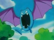 Brock's Golbat
