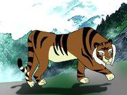 Rileys Adventures Amur Tiger